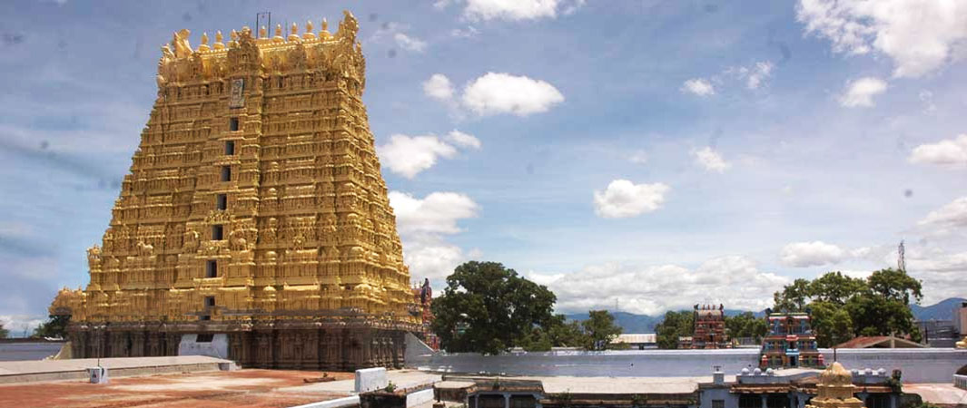 Arulmigu Sankaranarayanaswamy Temple Sankarankovil